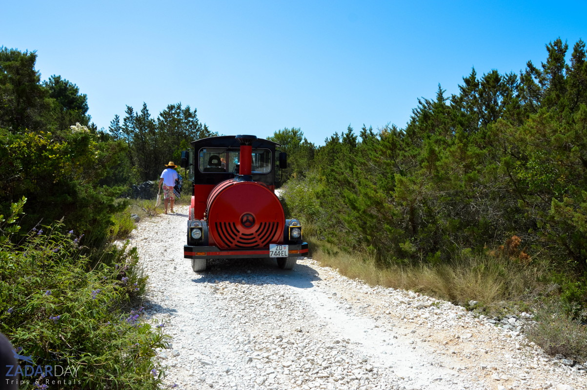 Transfer from Tito's tunnels to Sakarun beach either with a small train or shuttle bus